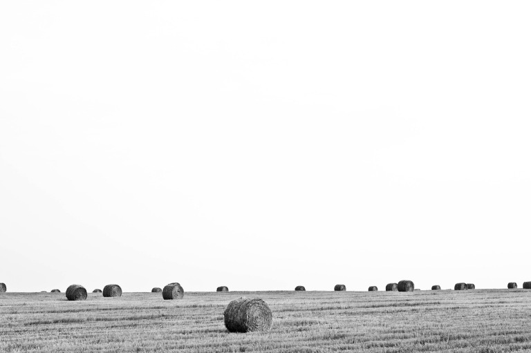 bales-of-straw-336612_1280